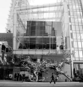 Momofuku+Toronto,+Exterior+2-LZ